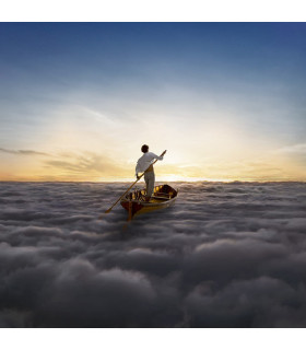 VINILOS - MUSICLIFE | PINK FLOYD - THE ENDLESS RIVER
