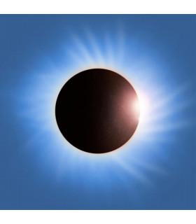 VINILOS - MUSICLIFE | PLACEBO - BATTLE FOR THE SUN